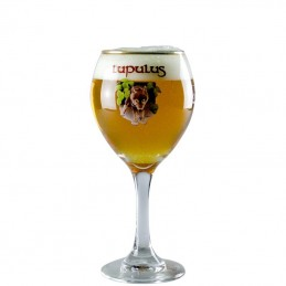 Verre à Bière Lupulus 25 cl