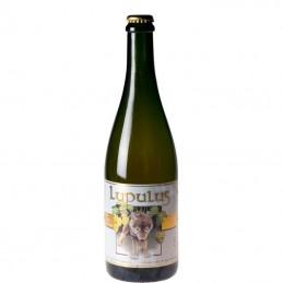 Bière Lupulus 75 cl - Bière Belge